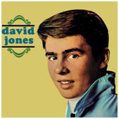 Davy Jones album cover