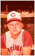 Don Zimmer on the Reds