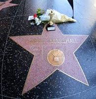 Garry Marshall star on Hollywood Walk of Fame