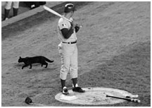 Ron Santo standing near black cat at Shea Stadium