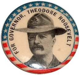 Theodore Roosevelt, Governor campaign pin